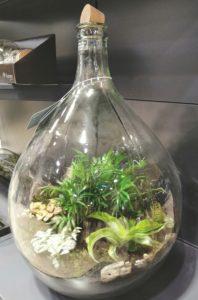 Trends 2020 IPM Glaspflanzen