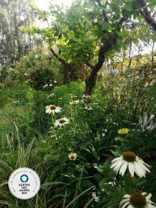 Gärten des Jahres 21