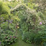 Garteneinblicke Pergola